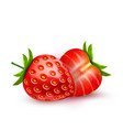 realistic detailed strawberry with slice vector image