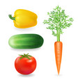 vegetables realistic tomato peppers carrot vector image