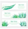 Aloe vera horizontal banners set vector image