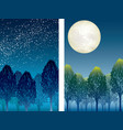forest at night vector image