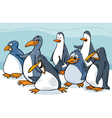 penguins group cartoon vector image vector image