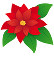 red poinsettia vector image vector image