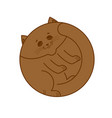 sleeping brown cat isolated home pet sleeps on vector image