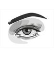 Realistic woman eye with makeup graphics vector image