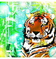 Fantasy Nature Tiger vector image vector image