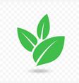green leaf icon for vegan bio eco design vector image vector image