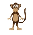 Monkey isolated on white background vector image