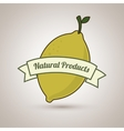 natural products food healthy vector image