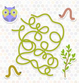 owl bird labyrinth game for Preschool Children vector image vector image