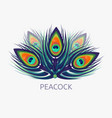 peacock logo in low polygon style vector image