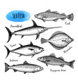 sea food chalk set vector image