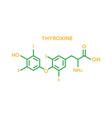 thyroxine hormone molecular formula human body vector image vector image