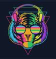 tiger headphone colorful eyeglasses vector image vector image