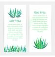 Aloe vera vertical banners set vector image vector image