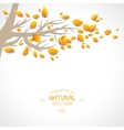Branch with autumnal leaves vector image