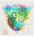 hipster realistic and polygonal koi fish vector image vector image
