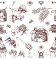 Honey Hand Drawn Seamless Pattern vector image