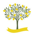 lemon tree with blank label on white background vector image vector image