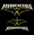 pterodactyls mascot logo vector image vector image