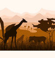 silhouettes african giraffe zebra leopard vector image