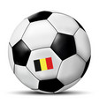 soccer ball with belgium flag vector image