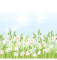 spring flowers snowdrops seamless pattern vector image vector image
