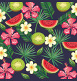 tropical garden with watermelon and kiwi vector image vector image