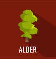 alder tree icon flat style vector image vector image