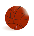 basket-ball ball vector image vector image