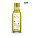extra virgin olive oil canned glass bottle vector image