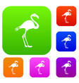 flamingo set collection vector image vector image
