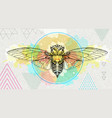realistic cicada on artistic watercolor background vector image vector image