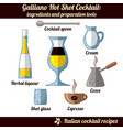 galliano hot shot cocktail infographic set of vector image vector image