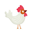 poultry rooster cartoon farm animal isolated icon vector image