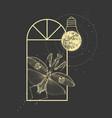 praying mantis and full moon like light bulb vector image