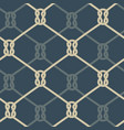 ropes background blue vector image vector image