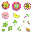 set elements paper craft 3d wild rose flowers vector image
