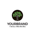 tree logo design concept template vector image vector image