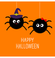Two hanging spider insect family couple Boy Girl vector image vector image