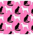 Animal seamless pattern of cat and dog vector image