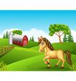Cartoon horse in the farm vector image vector image
