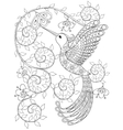 Coloring page with Hummingbird zentangle flying vector image