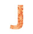 j land letter vector image