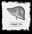 Paper art Human Liver vector image vector image