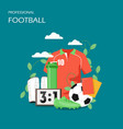 professional football flat style design vector image