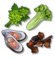 set of dill salad oysters and carnation vector image