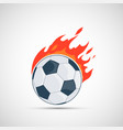 soccer ball is burning with flame vector image