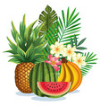 tropical garden with fruits vector image vector image