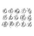 calligraphy lettering script font b set vector image vector image