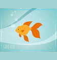 gold fish with bubbles in sea water blurred vector image